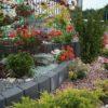 Палісад 30см і червоні квіти